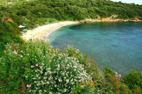 elba-spiaggia-barabarca