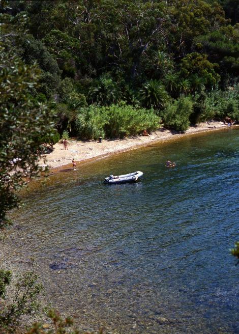 elba-spiaggia-ottonella